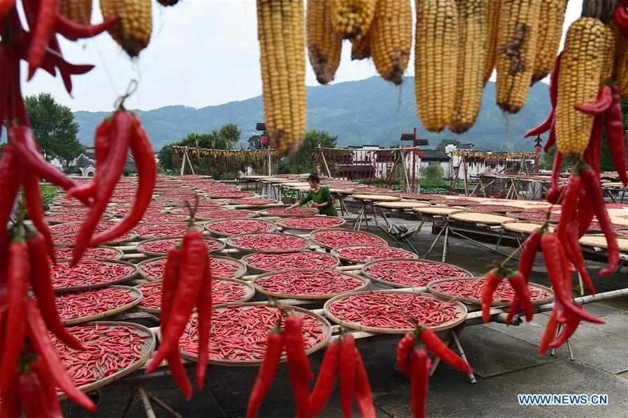 Villagers air chilies, corn at Chengkan Village in east China